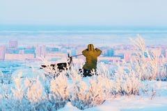 Άτομο με τη κάμερα φωτογραφιών στο τρίποδο που παίρνει timelapse τις φωτογραφίες αρκτικό tundra Στοκ Εικόνες