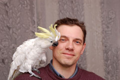 Άτομο με τη συνεδρίαση παπαγάλων στοκ εικόνα με δικαίωμα ελεύθερης χρήσης