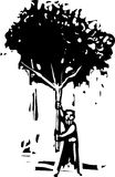Άτομο με το δέντρο Στοκ Φωτογραφία