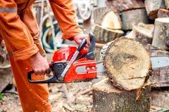 Άτομο με το αλυσιδοπρίονο που κόβει το δέντρο εργαζόμενος στο προστατευτικό εργαλείο Στοκ Φωτογραφίες