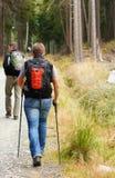 Άτομο με το περπάτημα των πόλων Στοκ Φωτογραφίες