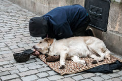 Άτομο με το σκυλί που ικετεύει στη γέφυρα του Charles Στοκ εικόνα με δικαίωμα ελεύθερης χρήσης
