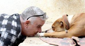 άτομο που αγαπά το αμερικανικό σκυλί τεριέ Staffordshire Στοκ Φωτογραφία