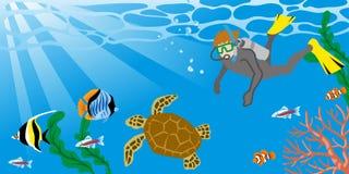 Άτομο που απολαμβάνει το σκάφανδρο που βουτά με τη χελώνα θάλασσας ελεύθερη απεικόνιση δικαιώματος