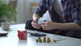 Άτομο που βάζει τα χρήματα στη piggy τράπεζα για τις διακοπές, δαπάνες αριθμήσεων στον υπολογιστή απόθεμα βίντεο