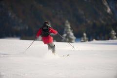 Άτομο που κάνει σκι προς τα κάτω, άποψη από την πλάτη του Στοκ Εικόνες