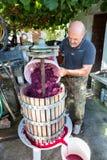 Άτομο που κατασκευάζει το κόκκινο κρασί στοκ εικόνες