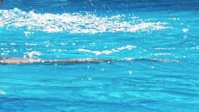 Άτομο που κολυμπά στη λίμνη απόθεμα βίντεο