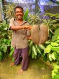 Άτομο που κρατά ένα κοκοφοίνικας-de στοκ φωτογραφία