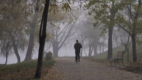 Άτομο που οργανώνεται στο πάρκο το ομιχλώδες πρωί φθινοπώρου απόθεμα βίντεο