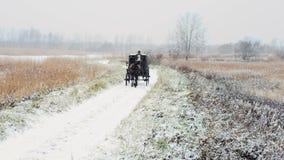 Άτομο που οδηγά μια μεταφορά αλόγων στο χειμερινό δρόμο απόθεμα βίντεο