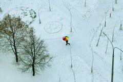 Άτομο που περπατά κάτω από τη ζωηρόχρωμη ομπρέλα Στοκ Εικόνες