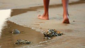 Άτομο που περπατά σε μια παραλία με τις λίμνες βράχου απόθεμα βίντεο