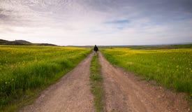 Άτομο που περπατά στους τομείς στοκ εικόνες