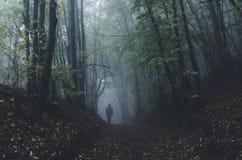 Άτομο που περπατά στο σκοτεινό μυστήριο δάσος με την ομίχλη μετά από τη βροχή στοκ φωτογραφίες