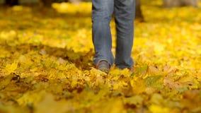 Άτομο που περπατά τα πεσμένα φύλλα απόθεμα βίντεο