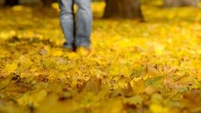 Άτομο που περπατά τα πεσμένα φύλλα φιλμ μικρού μήκους
