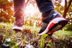 Άτομο που περπατά το διαγώνιο δάσος χωρών και ιχνών την άνοιξη Στοκ Εικόνα