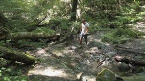 Άτομο που πηγαίνει πέρα από έναν ποταμό βουνών σε θερινό ημερησίως καταρρακτών απόθεμα βίντεο