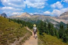 Άτομο που στο Canadian Rockies στο εθνικό πάρκο Banff στοκ φωτογραφίες