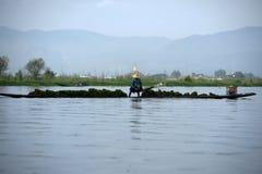 Άτομο που συλλέγει τα άλγη στη βάρκα στη λίμνη Inle στη Βιρμανία Στοκ Εικόνες