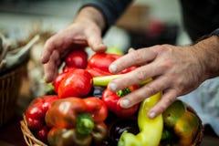 Άτομο που τοποθετεί τα κόκκινα πιπέρια του σε ένα καλάθι στην αγορά στοκ εικόνες με δικαίωμα ελεύθερης χρήσης