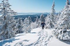 Άτομο που τρέχει στο χιόνι Στοκ Εικόνες