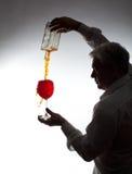 Άτομο, που χύνει το κρασί Στοκ φωτογραφία με δικαίωμα ελεύθερης χρήσης