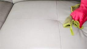Άτομο που ψεκάζει τον υγρό και σκουπίζοντας καναπέ δέρματος απόθεμα βίντεο