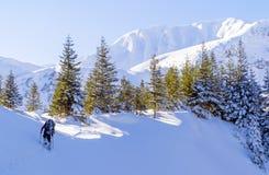 Άτομο στα βουνά Στοκ εικόνα με δικαίωμα ελεύθερης χρήσης