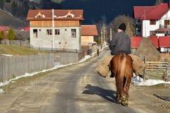 Άτομο στην πλάτη αλόγου Στοκ Εικόνες