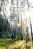 Άτομο στο δάσος Στοκ εικόνες με δικαίωμα ελεύθερης χρήσης