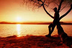 Άτομο στο δέντρο Η σκιαγραφία του απομονωμένου ατόμου κάθεται στον κλάδο του δέντρου σημύδων στο ηλιοβασίλεμα στην ακτή Στοκ Φωτογραφίες