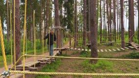 Άτομο στο λουρί σχοινιών στην αναρρίχηση της πλατφόρμας στο δέντρο απόθεμα βίντεο