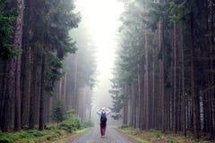 Άτομο στο ομιχλώδες δάσος φθινοπώρου στοκ εικόνα με δικαίωμα ελεύθερης χρήσης