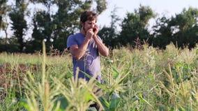 Άτομο της Farmer που μιλά στο κινητό τηλέφωνο στον τομέα του οργανικού αγροκτήματος eco απόθεμα βίντεο