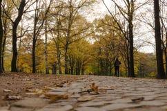 Άτομο τρεξίματος Στοκ εικόνες με δικαίωμα ελεύθερης χρήσης