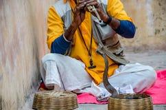 Άτομο φιδιών στο ηλέκτρινο οχυρό Jaipur Στοκ Εικόνες