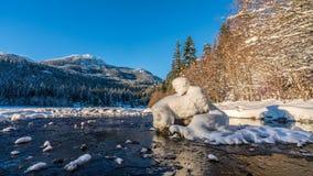 Άτομο χιονιού στον ποταμό στοκ εικόνες με δικαίωμα ελεύθερης χρήσης