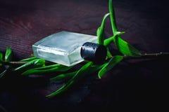 Άτομο parfume Στοκ Φωτογραφία