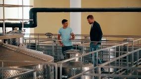 Άτομο vintner και winemaker εξοπλισμός επιθεώρησης για το κρασί παραγωγής στο εργοστάσιο απόθεμα βίντεο