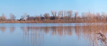 άφθονο τοπίο πλημμυρών στοκ φωτογραφία με δικαίωμα ελεύθερης χρήσης