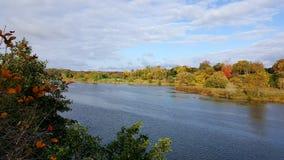 Άφιξη φθινοπώρου Στοκ φωτογραφία με δικαίωμα ελεύθερης χρήσης