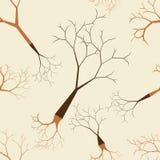 Άφυλλο άνευ ραφής σχέδιο δέντρων Στοκ φωτογραφία με δικαίωμα ελεύθερης χρήσης