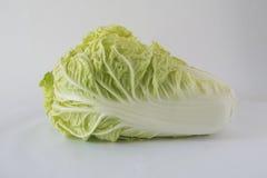 λάχανο που βάζει το λευκό Στοκ Εικόνα