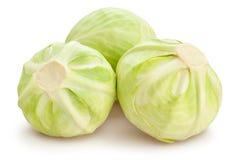 λάχανο που βάζει το λευκό Στοκ Εικόνες