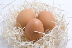 άχυρο αυγών κινηματογραφ Στοκ εικόνες με δικαίωμα ελεύθερης χρήσης