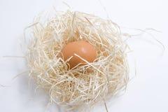 άχυρο αυγών Στοκ εικόνες με δικαίωμα ελεύθερης χρήσης