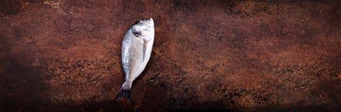 Άψητα ψάρια στο σκοτεινό εκλεκτής ποιότητας υπόβαθρο Ελεύθερου χώρου για το κείμενό σας απαγορευμένα στοκ εικόνες με δικαίωμα ελεύθερης χρήσης