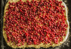 Άψητη πίτα κόκκινων σταφίδων σε ένα τηγάνι πιτών μετάλλων Κόκκινα φρούτα και μούρα Στοκ Εικόνες